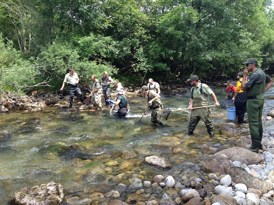 Hidrobiología y gestión ambiental