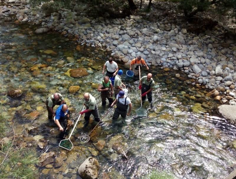 Curso de seguridad y técnicas de pesca eléctrica en ríos vadeables